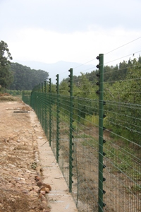 Piggy Back Fencing on a mesh fence!