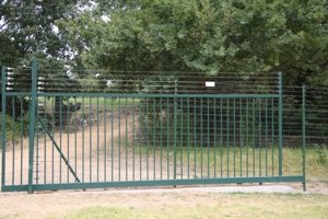 Gate in the Piggy Back Fence 1